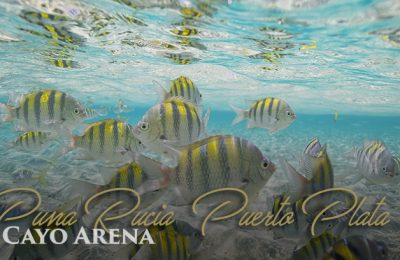 Cayo Arena | Dominican Republic | Bahia Principe Privilege Club