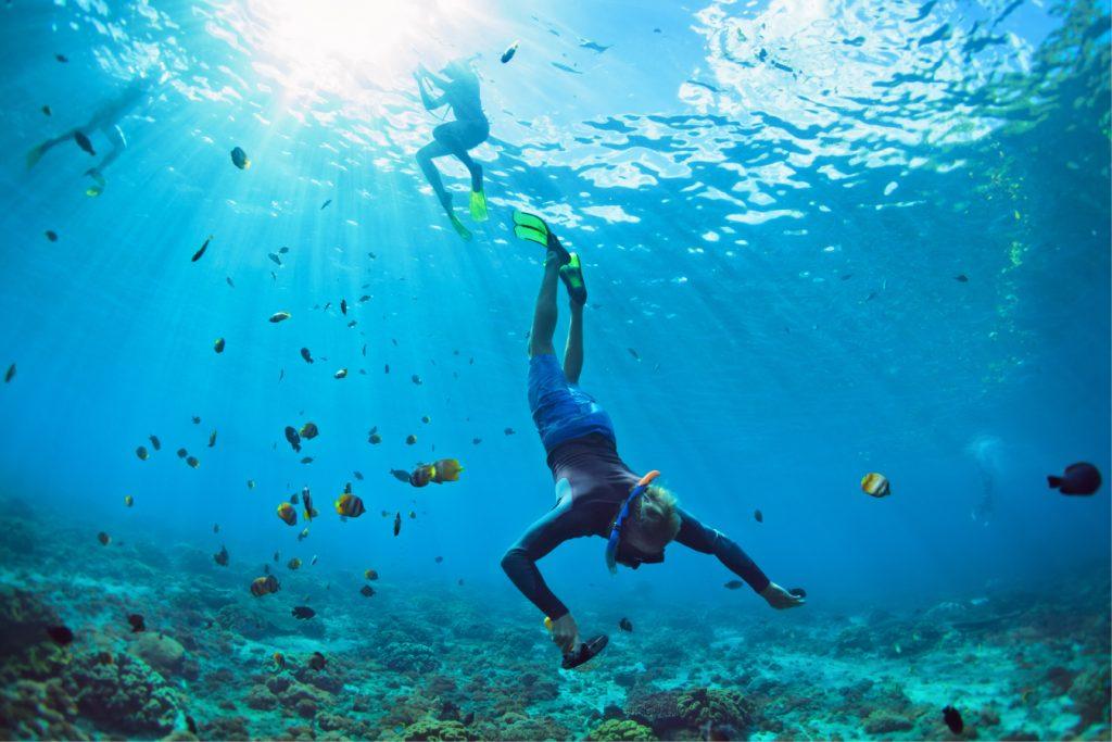 Aquatic Adventures - Aventuras Acuáticas  -  Aventures aquatiques
